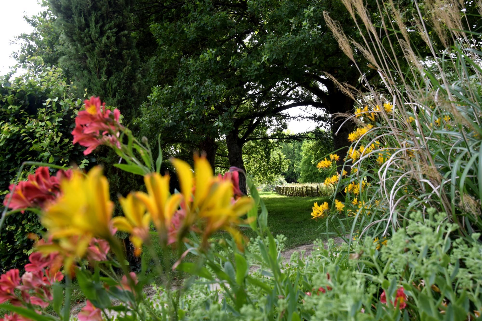 les Jardins de Brocéliande, fleurs