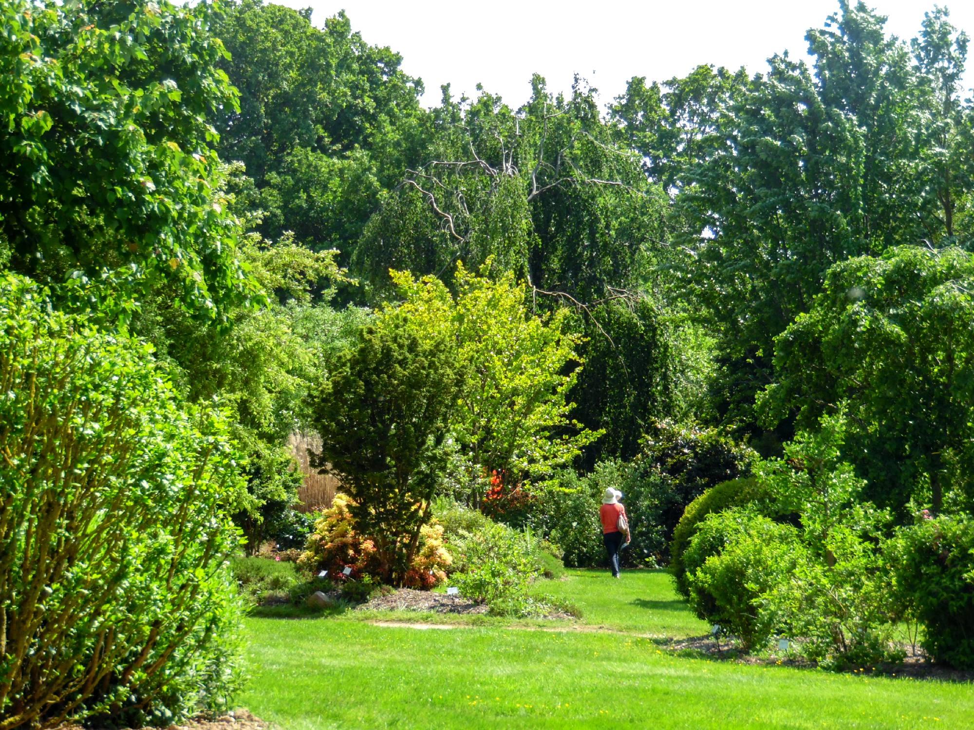 Jardins de Brocéliande, jardin à l'anglaise
